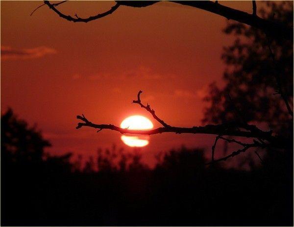 Images coucher de soleil - Page 2 064cf84b