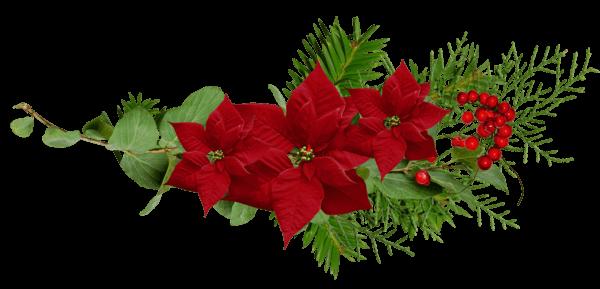 Cosas Para Photoscape Flores Y Plantas Arboles Ps: Noel Decoration