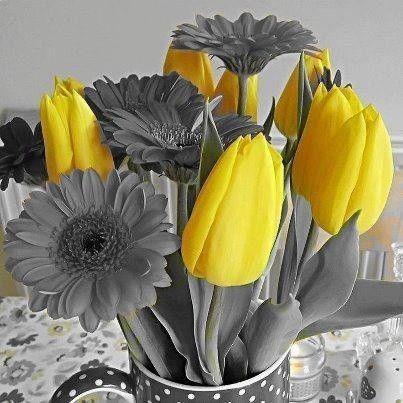 Couleurs noir et couleurs page 3 - Noir et blanc couleur ...