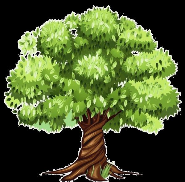 Nature/Environnement Arbre