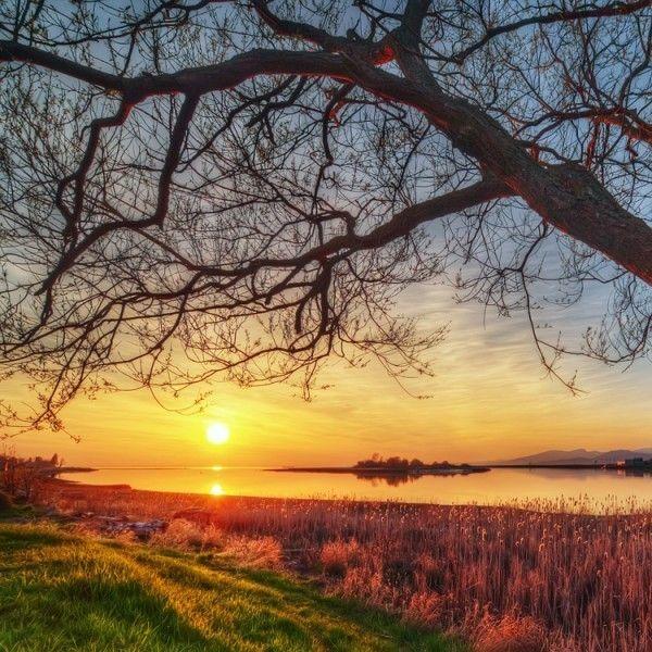 Images coucher de soleil - Page 2 66c6d518