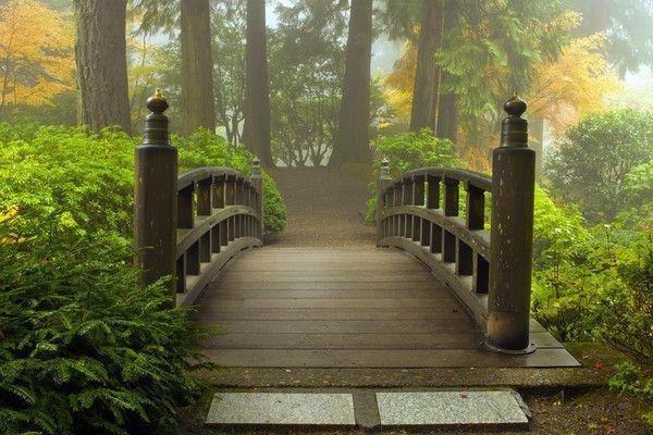 Nature/Environnement Jardin