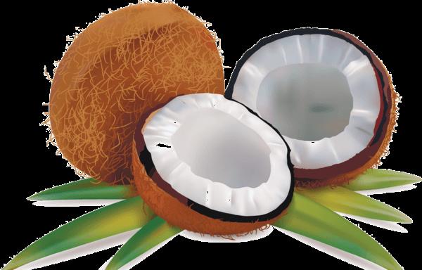 Fruitslegumes page 3 - Dessin noix de coco ...
